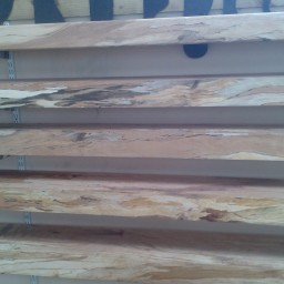 Selection of Spalted Beech Timber