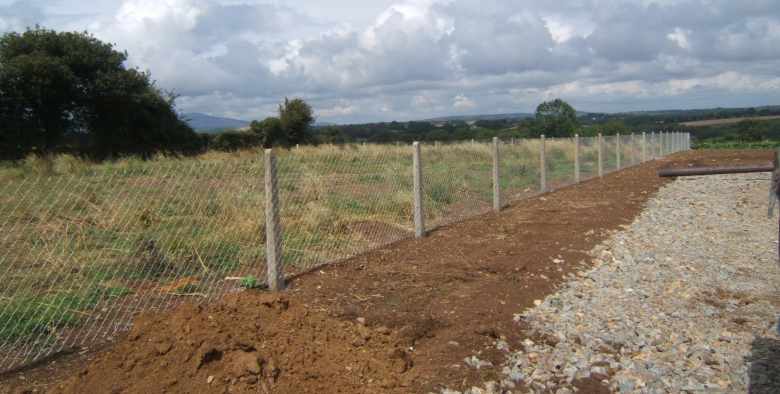Chainlink Fence & Concrete Posts