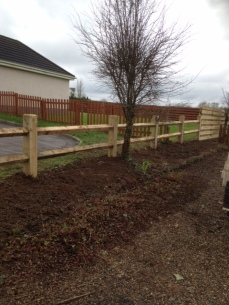 Chunky 2-Bar Ornate Fencing